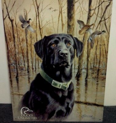 Ducks Unlimited Black Labrador Hunting Dog Cabin Wall Decor Picture Gift New USA