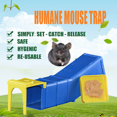 Humane Mouse Mice Trap Live Capture Animal Pest Gage Safe Reusable BUY 1 OR 5