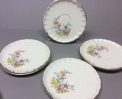 6- W.S. George Cup Saucers Bolero No CUPS Wildflower Fence Gold Trim