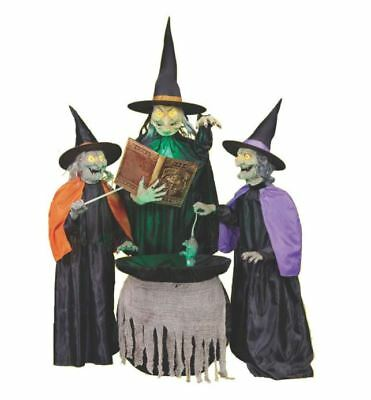 Life Size Animated SPELL CASTING WITCH SISTERS Halloween Prop LIGHTED CAULDRON