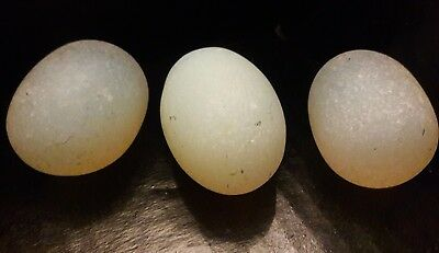 Lot of 3 Antique Solid Opaline Glass Eggs