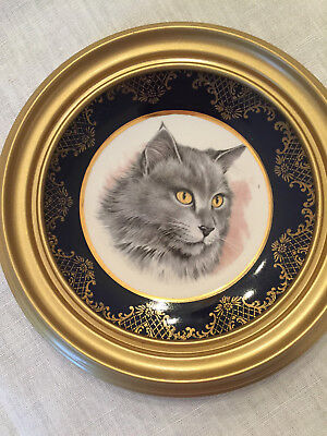 "Weatherby Hanley England Royal Falcon Ware Cat Decorative Plate 5"" W/gold frame"