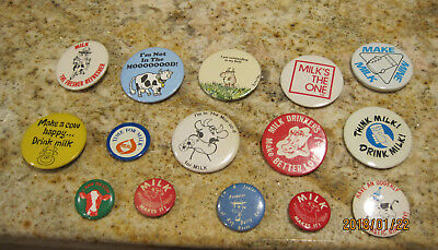 Lot Of 15  Vintage Cow Dairy And Funny Cow  Pins Pinbacks