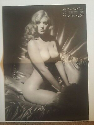1983 Shannon Tweed Double Sided Hurrell Photograph Pinup Nude Print