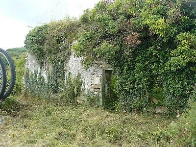 Cottage in ruins (Southern Ireland)