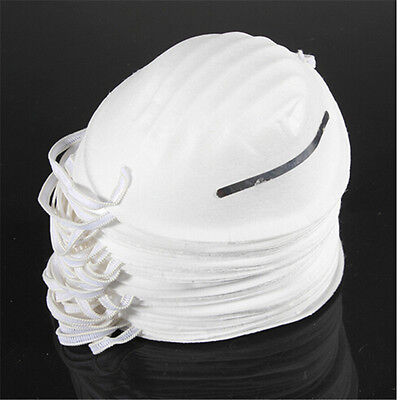 10x Dust Mask Disposable Cleaning Moldeds Face Masks Respirator Safety Pip
