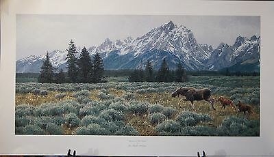 """SUMMER IN THE TETONS"" by Jan Martin McGuire"