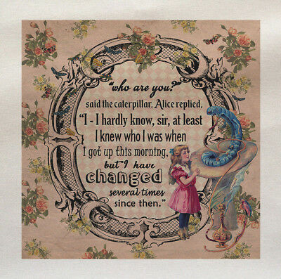 Alice In Wonderland Who Are You Changed Printed Fabric Panel Make A Cushion