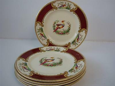 "Myott Staffordshire Chelsea Bird Red 6 X 9"" Lunch / Salad Plates"