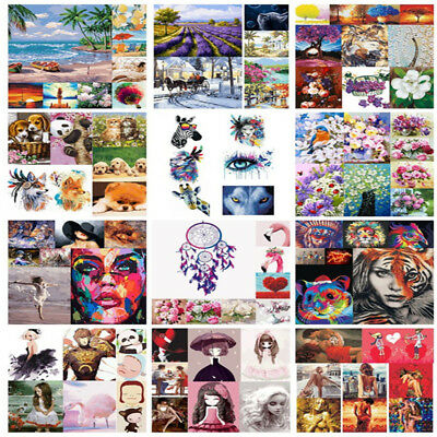 40*50cm Frameless Pictures DIY Painting By Numbers Acrylic Oil Canvas Wall Art