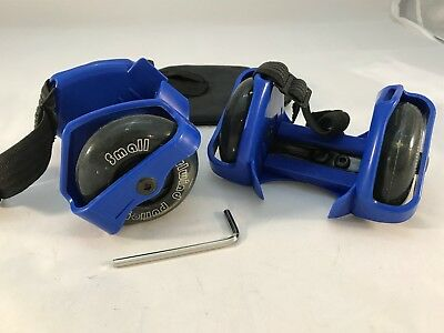 Small Whirlwind Pulley Detachable Roller Skates with LED Light,blue XMAS