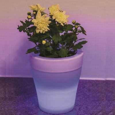 Colour Changing Plant Pot Mood