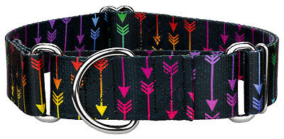 Country Brook Petz® 1 1/2 Inch Martingale Dog Collar - Hot Fashion Collection