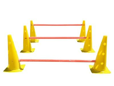 Dog Agility/ Training Practice Jump/ Hurdle X 3 Set