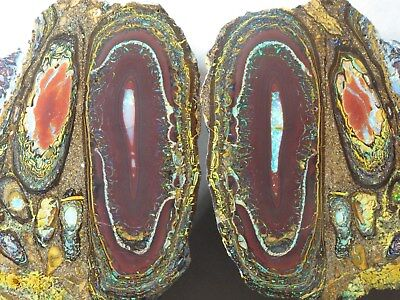 Koroit Conglomerate Opal Collectors Piece !!! Pair  Ca. 318 Gramme. Mit Video