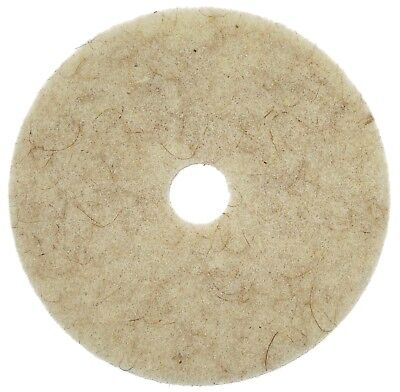 Pack of 5- Hog Hair scrubbing Floor Pad