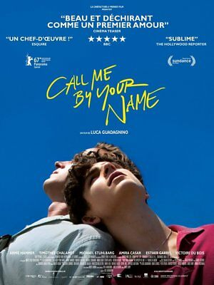 CALL ME BY YOUR NAME Affiche Cinéma Originale Movie Poster Luca Guadagnino