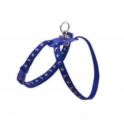 Ancol Figure 8 Cat Kitten Harness & Lead Set Night Reflective Blue