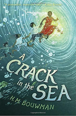 Bouwman H. M.-A Crack In The Sea  (US IMPORT)  HBOOK NEW