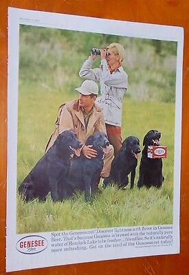 1961 Genesee Beer Ad With Couple & Black Lab Dogs / Vintage 60S American Booze