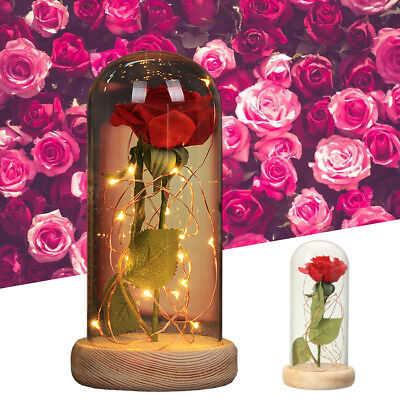 Beauty And The Beast Enchanted Red Rose Glass Dome LED Valentines Day Gift US