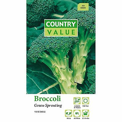 Broccoli seeds.vegetable,garden,plants,pot,flower,fast Growing,easy,