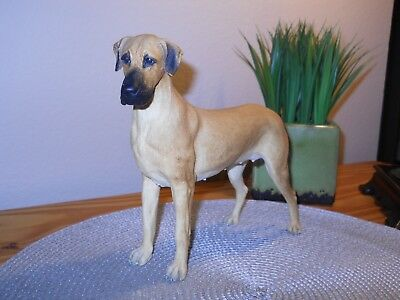 Big Beautiful Fawn Great Dane with uncropped ears Resin 8 inches tall
