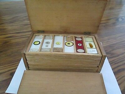 72 antique microscope slides with case - wide variety by professional mounters