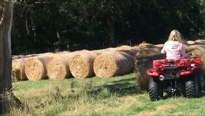 Small round hay bales