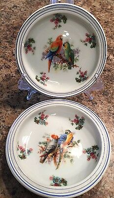 Schumann Bavaria 2 Small Plates Parrots Birds Colorful Vintage Germany US Zone