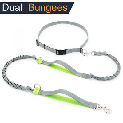 Hands Free Dog Leads, Safety Dog Leashes with One Adjustable Waistband for Pet's