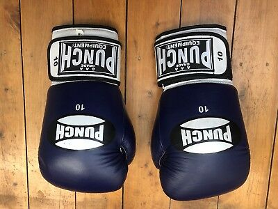 Boxing Gloves 10 Oz With large Focus Pads