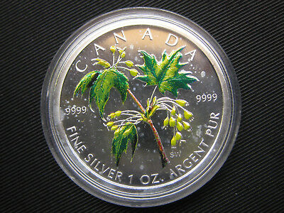 5 Dollar 2003 Mapel Leaf in Bunt 1 Unze Silber