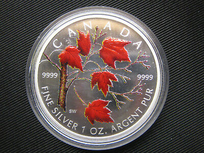 5 Dollar 2004 Mapel Leaf in Bunt 1 Unze Silber