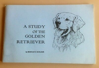 A Study Of The Golden Retriever ~ Detailed Conformation Dog Book/booklet