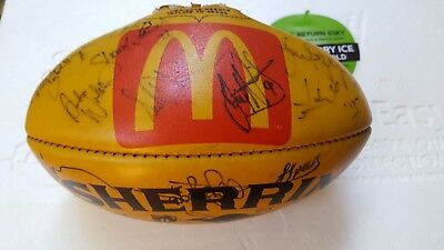 Sherrin 1990s mcdonalds game ball. Signed by demons players