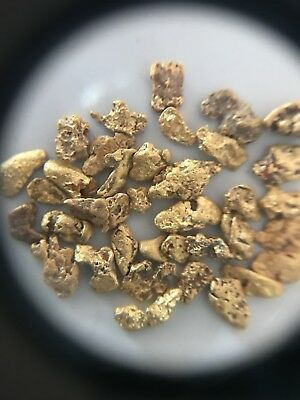 37 Gold Nuggets 5.07