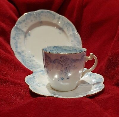 Foley China (Shelley) trio, Rd 279279, pattern 5900, Fern pattern