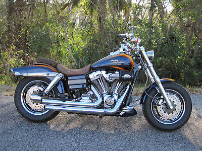 2010 Harley-Davidson Dyna  2010 Harley Davidson FXDFSE2 Dyna Fat Boy CVO Delivery Possible to FL/GA/SC/NC