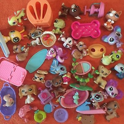 Bulk Lot Of 40 + Collectable Toys 24 Figures + Accessories Koalas Dogs Cats Fish
