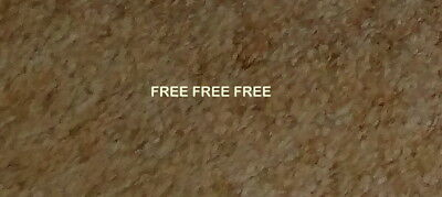 Free. carpet and underlay. use in man cave, garage, garden beds. Geelong