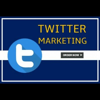 *sale*promote Your Website To Twitter/facebook 250 + Hit's Daily /60 Days!