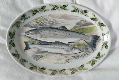 Vintage Portmeirion Complet Angler Trout Fish Serving Platter