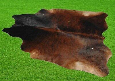 """New Cowhide Rugs Area Cow Skin Leather 22.13 sq.feet (59""""x54"""") Cow hide P-171"""