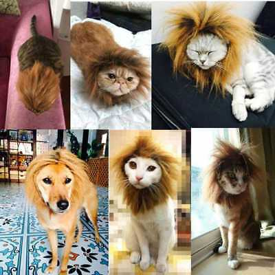 Pet Costume Lion Headgear For Dog Christmas Clothes Festival Fancy Dress up GIFT