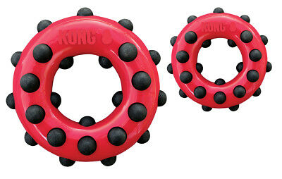 Kong Dotz Circle Small - Hunde Apportierspielzeug
