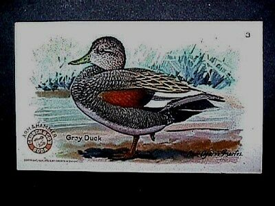 Gray Duck Collectible Trade Card Cow Brand & Arm & Hammer Advertising 1924