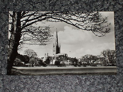 Norwich Cathedral  Photo Postcard Vintage Rp Unposted Vgc