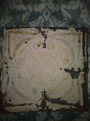 One Antique ceiling tile. 12in x 12in