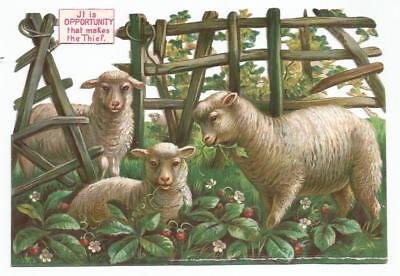 H10 - Large Diecut Victorian Scrap - Sheep Eating Strawberry Plants - Oblate